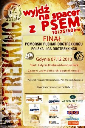 plakat_gdynia-2013_ok2